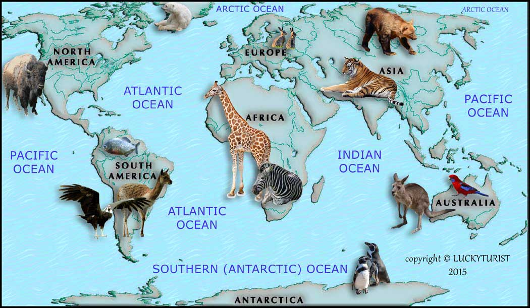Continents Of The World - Seven continents of the world